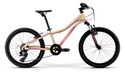 Велосипед Merida 2021 MATTS J.20 ECO MATT LIGHT SAND(BERRY)